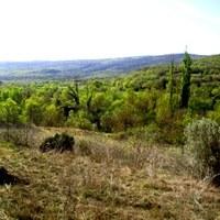 Serra de Montclús (Xarxa Natura 2000)